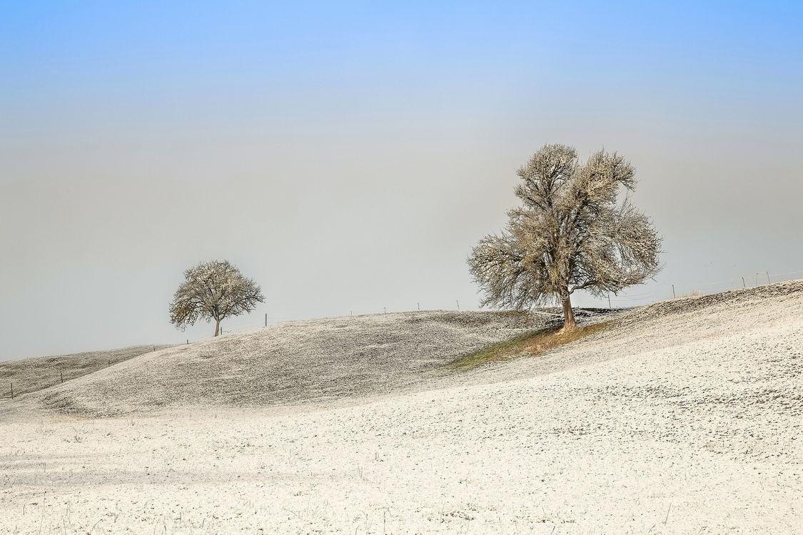 Заставка поле, холмы