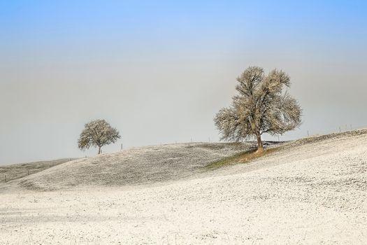 Saver field, hills