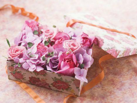 Фото бесплатно цветы, розы, коробка