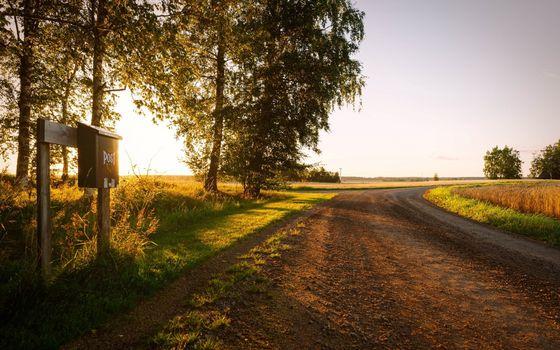 Бесплатные фото дорога,почтовый ящик,поля,трава,деревья,небо
