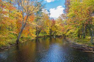 Заставки осень,река,лес деревья,пейзаж