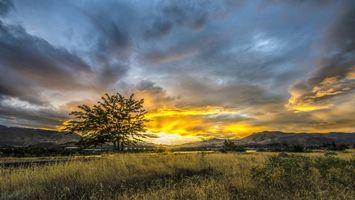 Photo free grass, trees, mountains