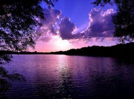 Фото бесплатно ветви деревьев, небо, облака