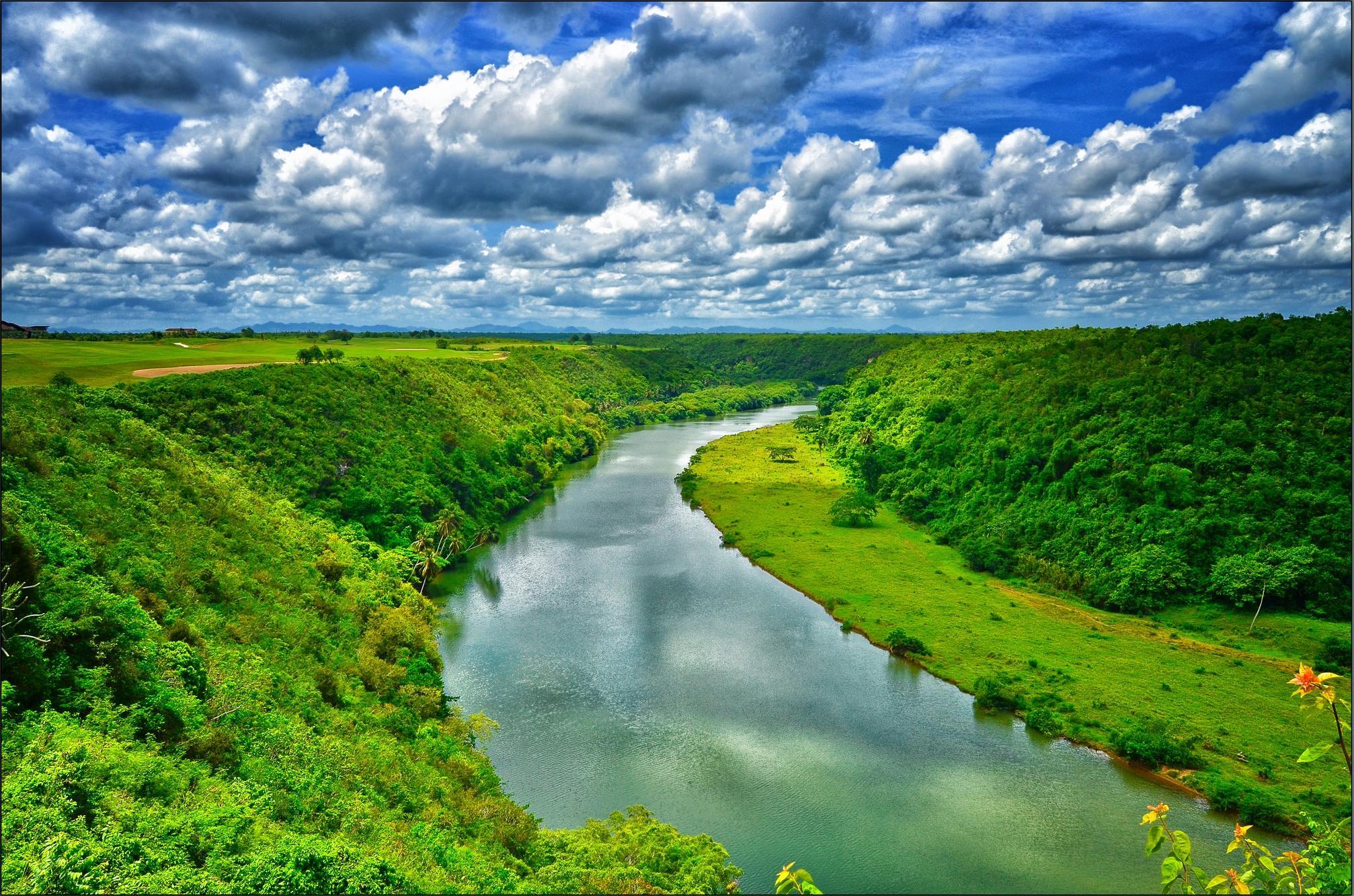 поля, река, деревья