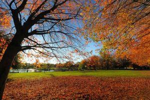 Фото бесплатно Trout Lake, Vancouver, осень