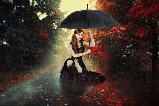 Photo free girl under an umbrella, girl, autumn