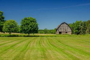 Заставки поле, дом, деревья