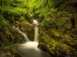 Заставки лес,водопад,деревья,скалы,природа