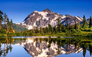 Photo free lake, glade, reflection