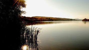Бесплатные фото берег,деревья,трава,холмы,река,небо