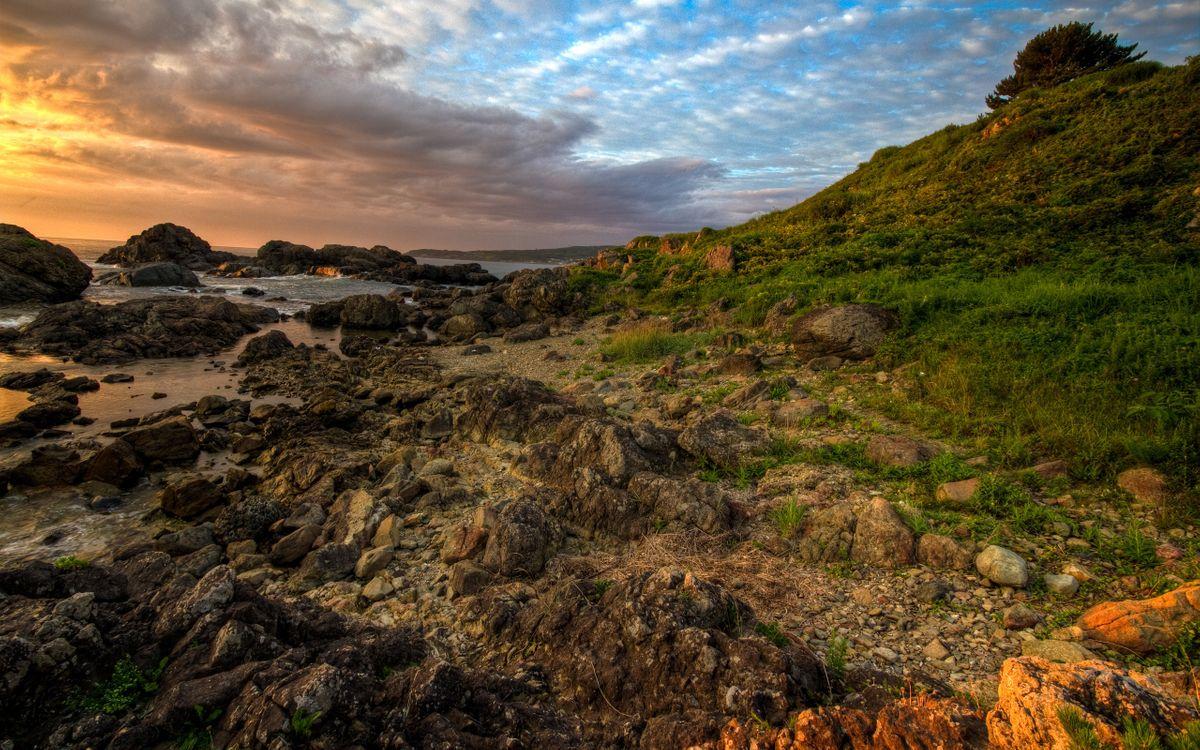 Фото бесплатно берег, камни, трава, море, небо, облака, природа
