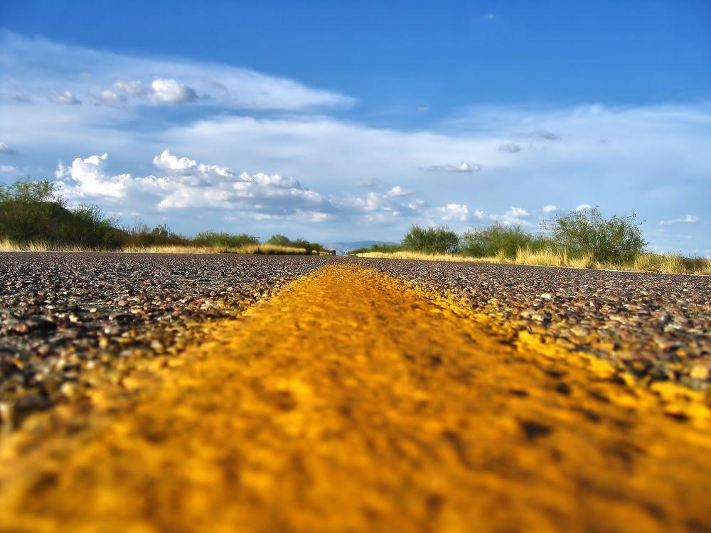 Фото бесплатно Буш, дорожная разметка, дорога - на рабочий стол
