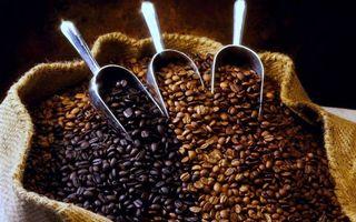 Бесплатные фото мешок,кофе,зерна,разные,совочки,металл