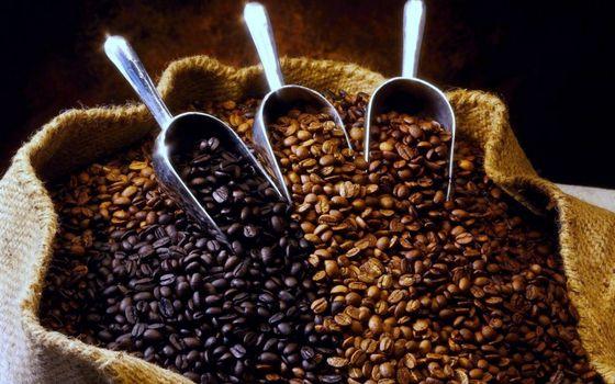 Фото бесплатно зерно, металл, совочки