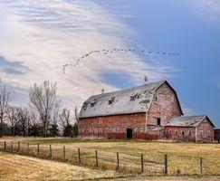 Заставки поле, дом, осень