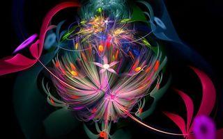 Бесплатные фото узоры,линии,цветы,разноцветные,фон,черный