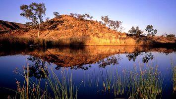 Бесплатные фото Вода,трава,саванна,деревья,синее небо