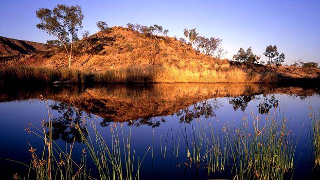Фото бесплатно Вода, трава, саванна