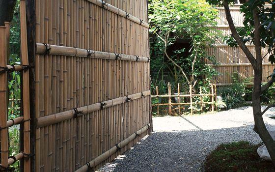 Фото бесплатно ворота, забор, растительность