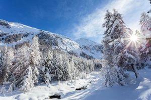 Заставки зима, горы, деревья снег