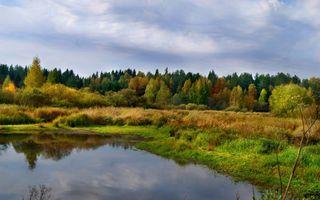 Фото бесплатно осень, озеро, берег
