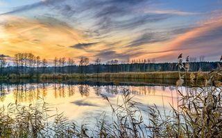 Бесплатные фото закат, водоём, деревья, пейзаж