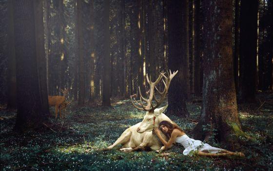 Фото бесплатно девушка, олень, лес