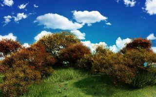 Фото бесплатно холм, трава, зеленая