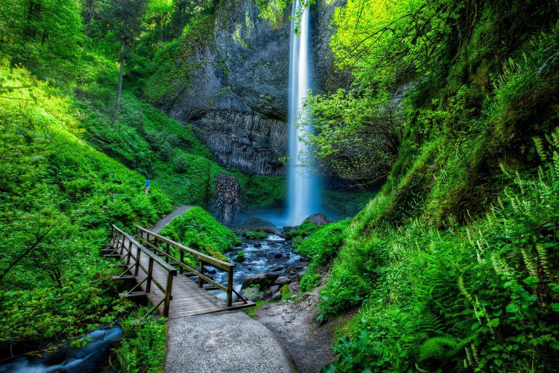 Фото бесплатно Lautrell Falls, Водопад, Водопады, Ущелье реки Колумбия, Columbia Gorge, Орегон, пейзажи