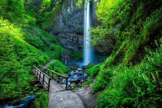 Фото бесплатно Lautrell Falls, Водопад, Водопады, Ущелье реки Колумбия, Columbia Gorge, Орегон