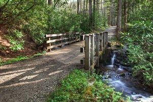Бесплатные фото дорога, мост, речка, водопад, лес, деревья, пейзаж