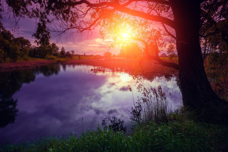 обои осень, река, закат, деревья картинки фото
