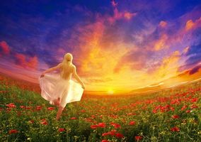 Бесплатные фото закат,поле,девушка