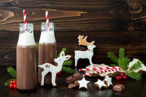 Заставки новый год,олени,печенье,глазурь,шоколад,ветка ели,бутылки
