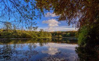 Заставки озеро, лес, деревья
