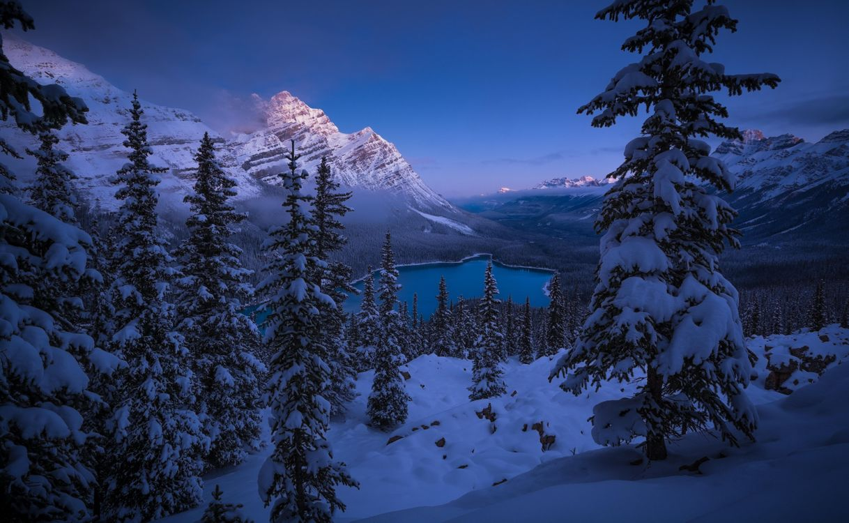 Фото бесплатно Peyto Lake, Banff National Park, зима, горы, озеро, деревья, пейзаж, пейзажи