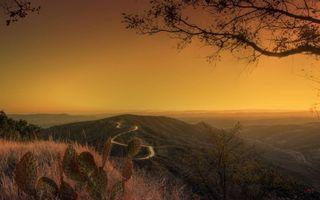 Бесплатные фото вечер,горы,трава,кактус,деревья,дорога,небо