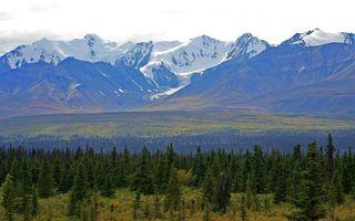 Фото бесплатно предгорье, растительность, горы, вершины, снег, небо
