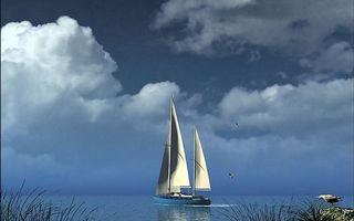 Обои трава, озеро, птицы, яхта, паруса, горизонт, небо, облака