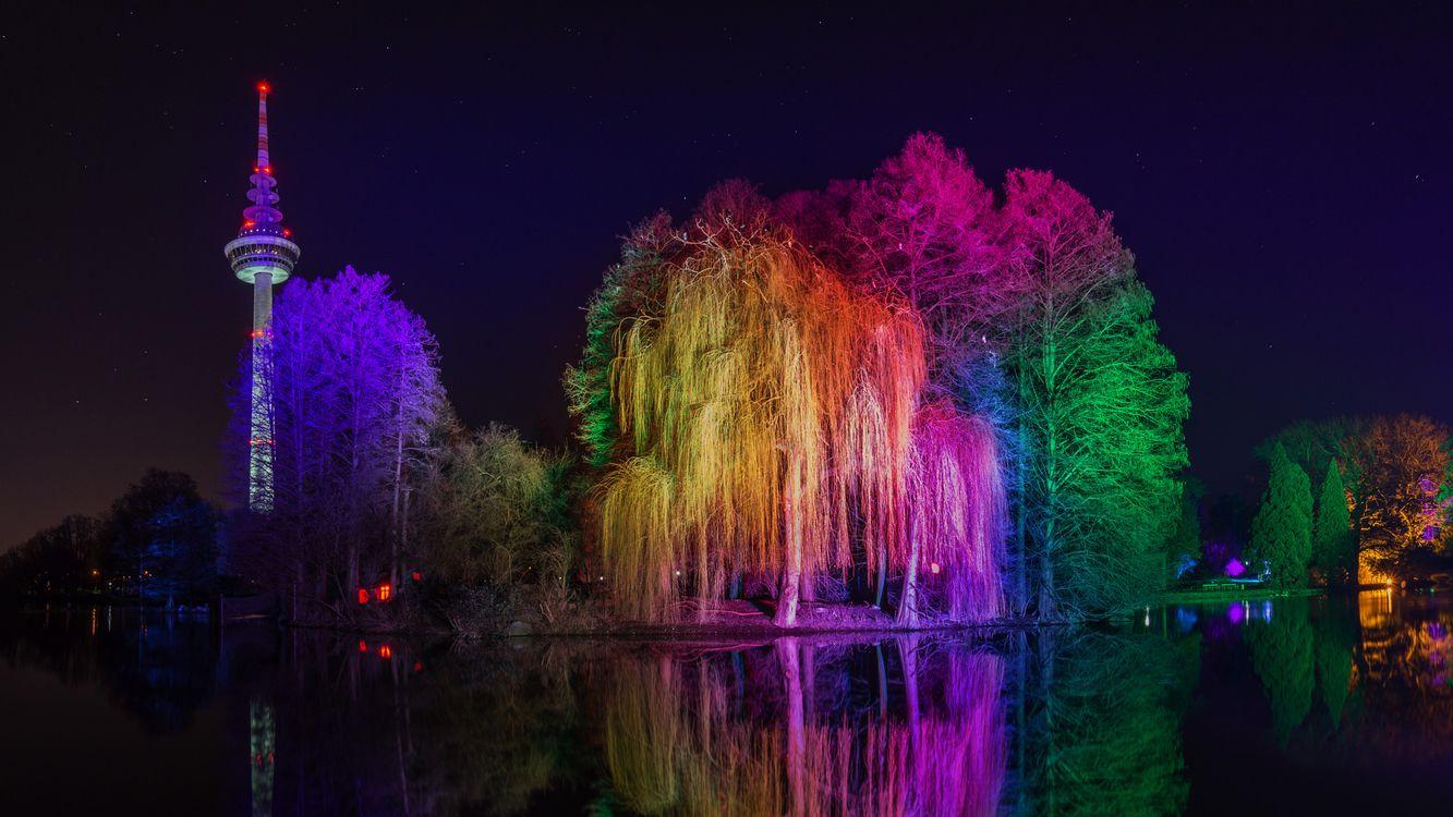 Фото бесплатно Мангейм, Германия, ночь, парк, город