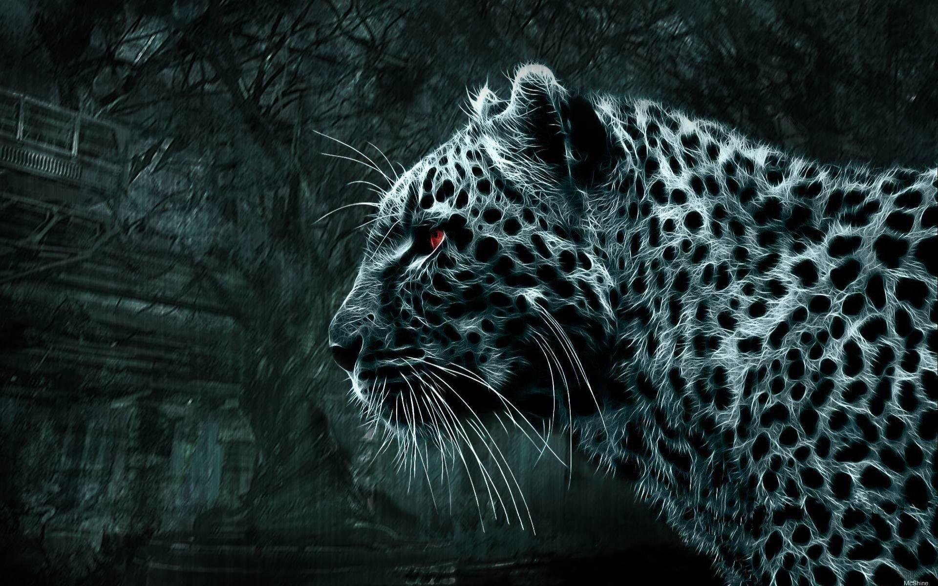 Обои Леопард, заброшенный дом, лес, ночь
