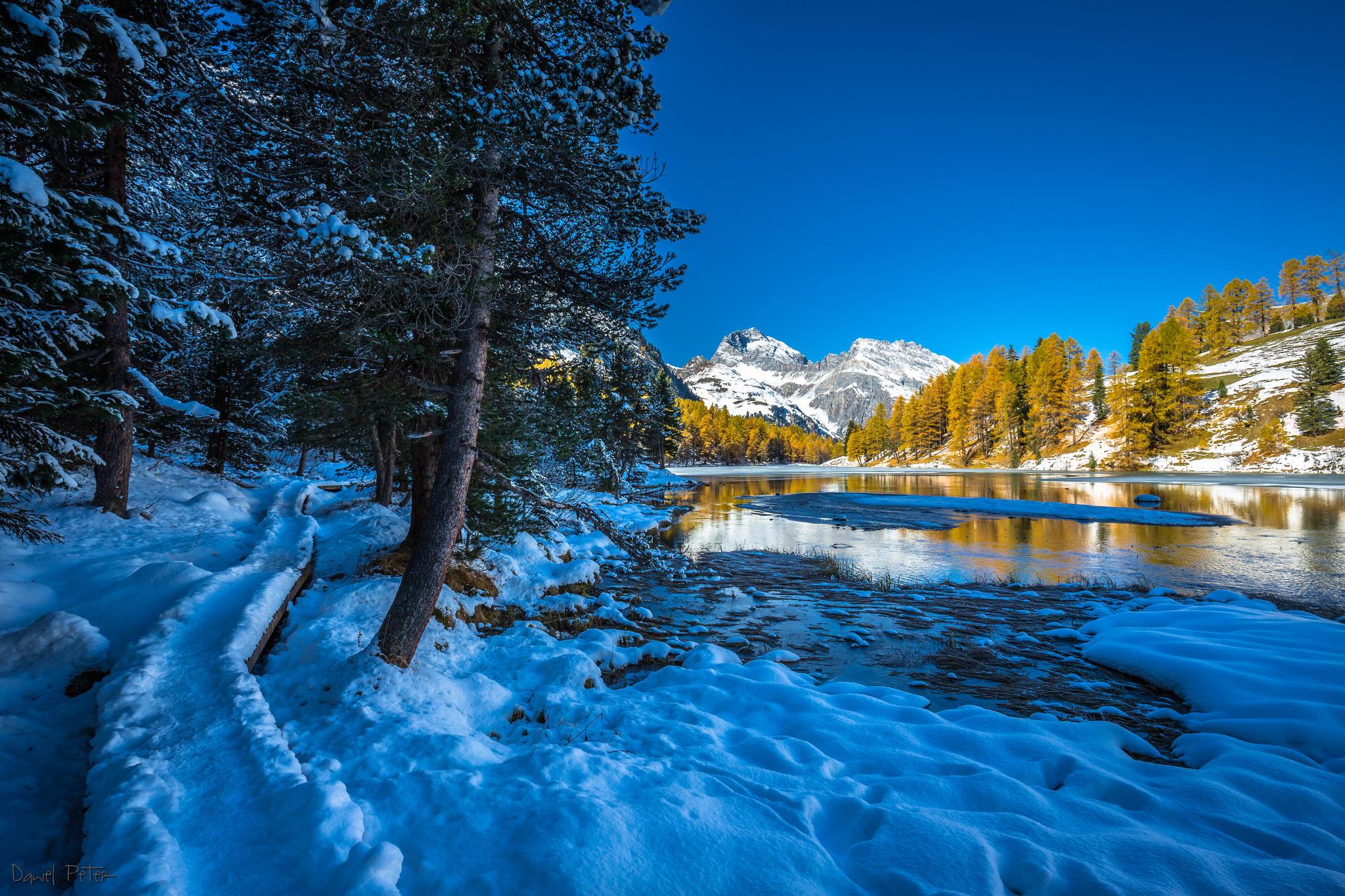 обои зима, река, деревья, горы картинки фото