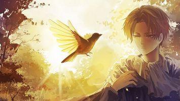 Бесплатные фото парень,взгляд,птица,полет,природа,солнце
