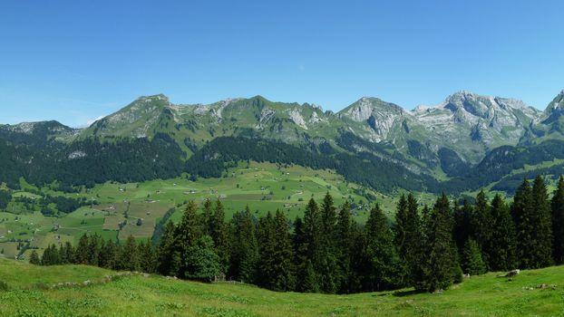 Фото бесплатно предгорье, трава, деревья