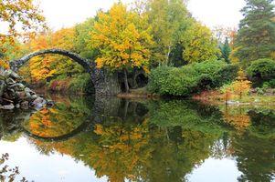Фото бесплатно Германия, осень, лес
