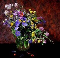 Бесплатные фото цветы,ваза,натюрморт