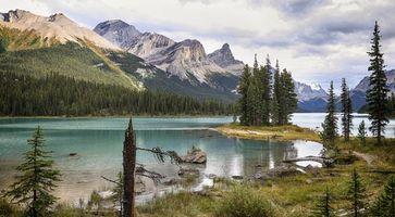 Бесплатные фото Maligne Lake, Jasper National Park, Canada, озеро, горы, деревья, пейзаж
