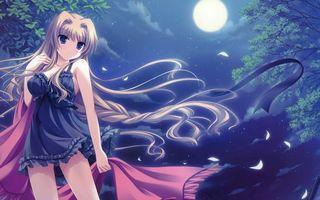 Фото бесплатно девушка, глаза, волосы, пеньюар, ночь, деревья, луна