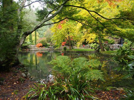 Melbourne, парк, пруд, деревья, осень