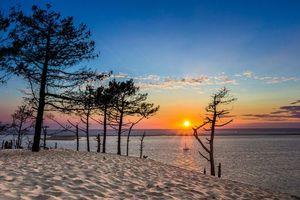 Бесплатные фото закат,море,берег,песок,деревья,пейзаж